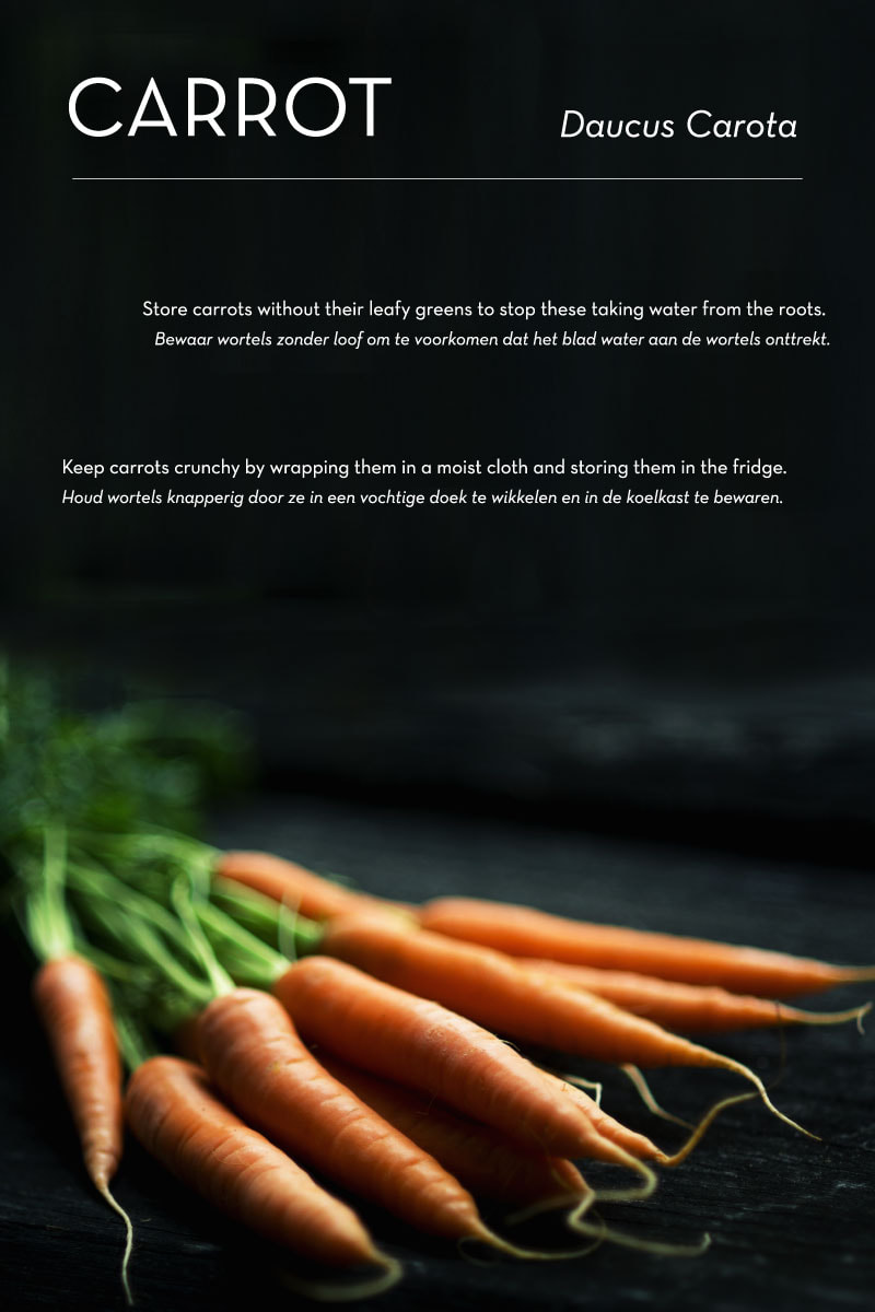 Poma/Olera: keep fruits and vegetables fresh for longer // research: carrots - By House of Thol