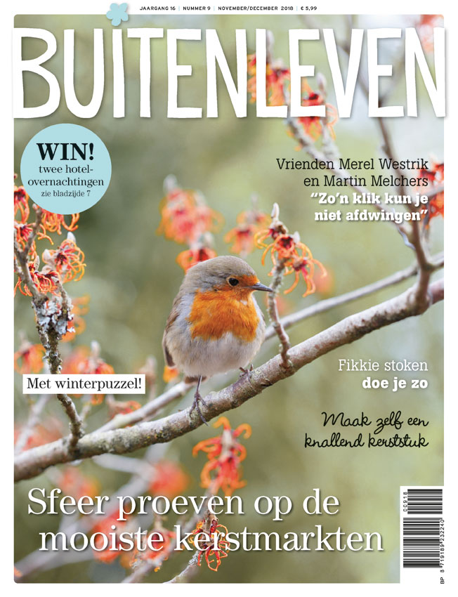 Flower Constellations publication in magazine Buitenleven